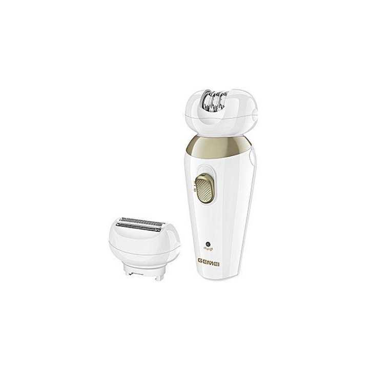 Gemei GM- 600 Professional Lady Epilator And Shaver – 2 in 1